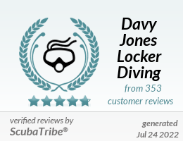 https://img.scubatribe.reviews/images/300/user_212/new-djl-diving-logo-400-x-400.jpg